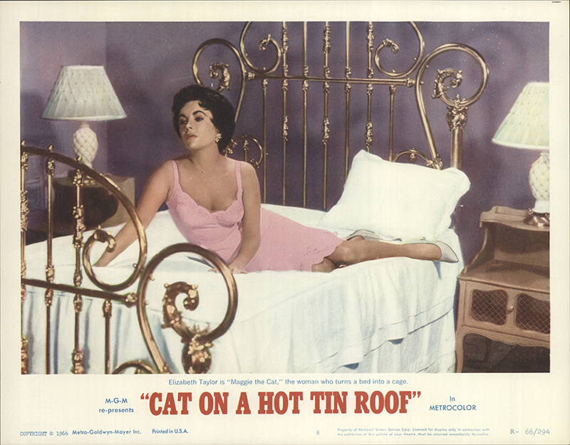cat on a hot tin roof 2 essay