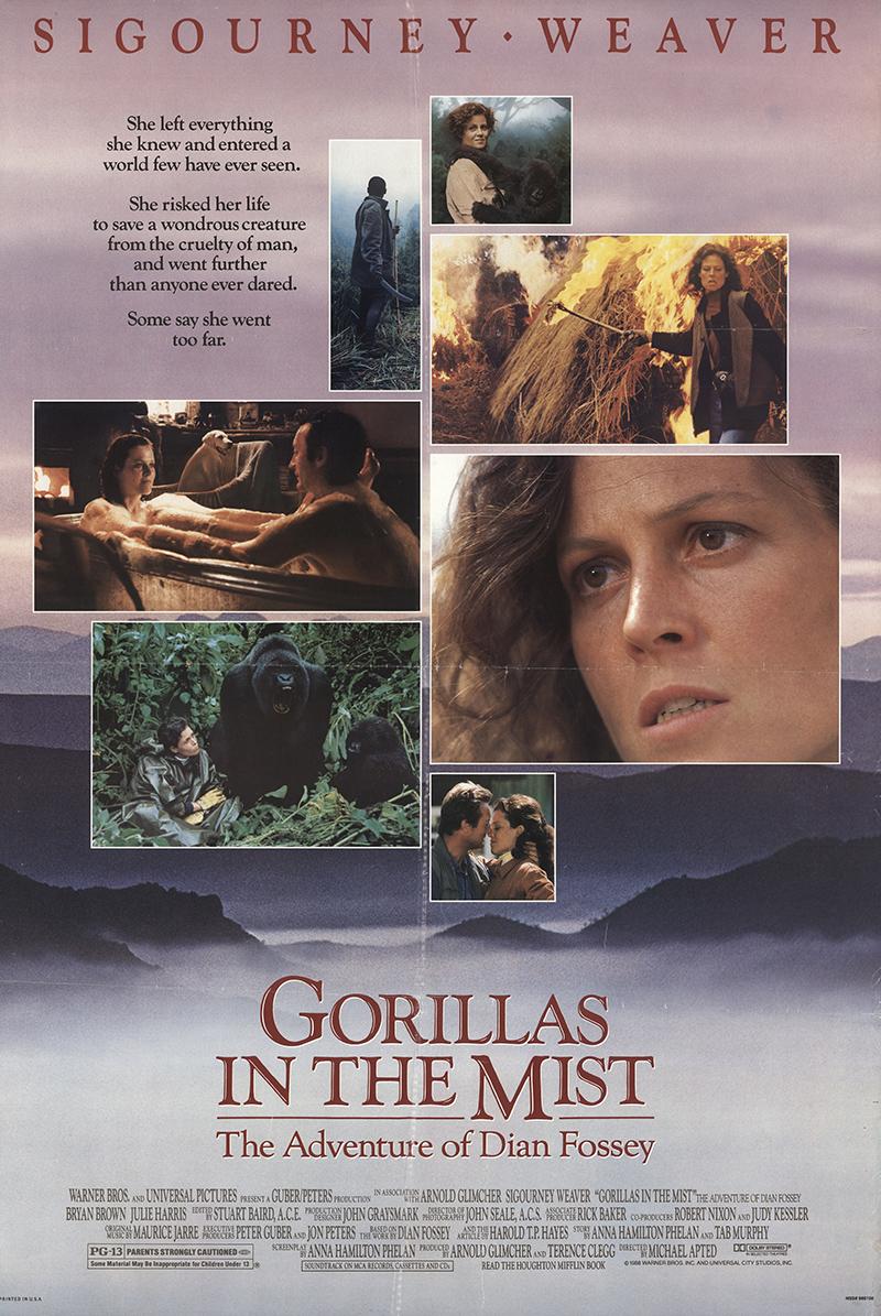 Gorillas in the Mist - FFF-30759