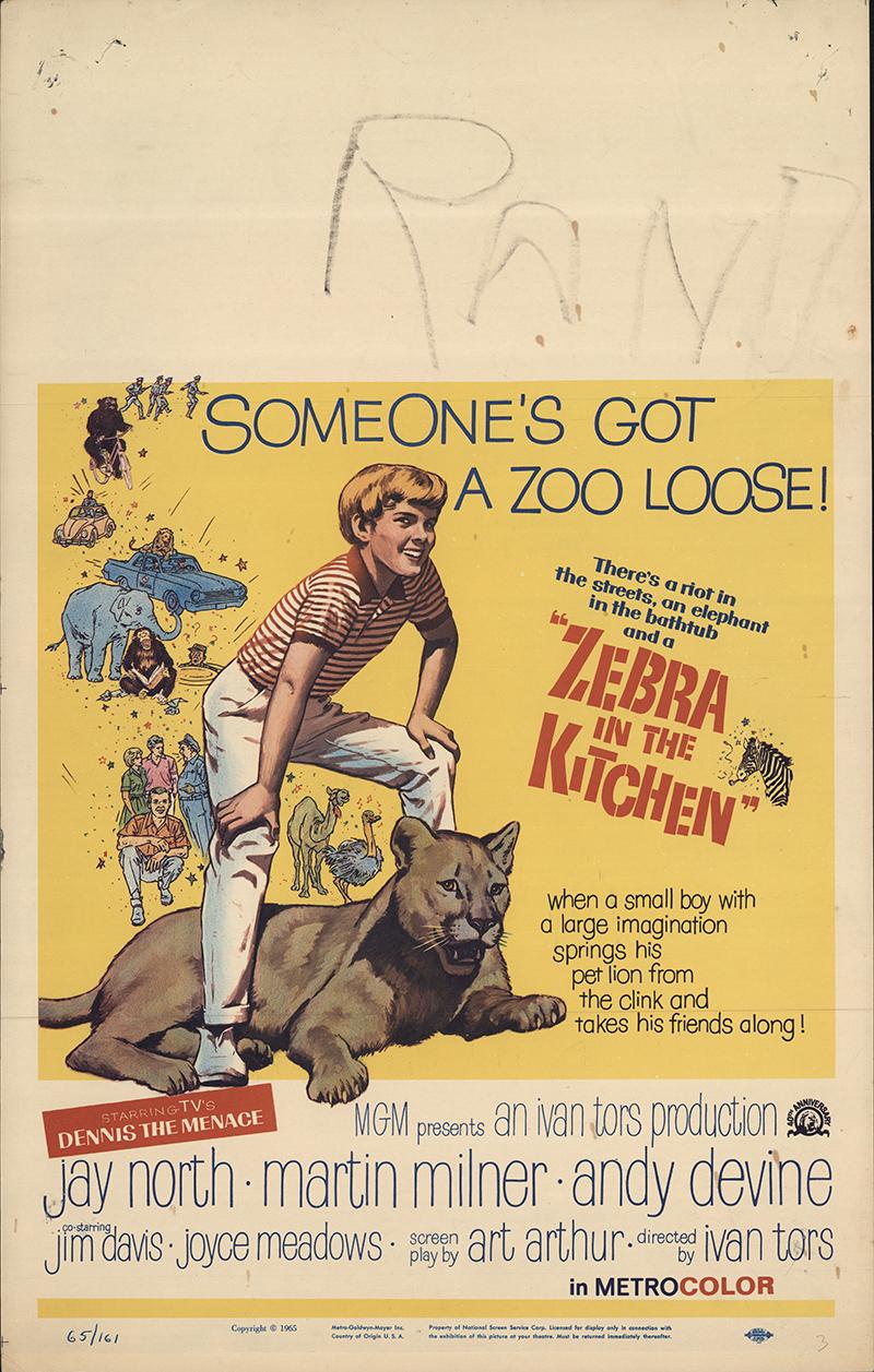 Zebra In The Kitchen 1965 Original Movie Poster Fff 55621 Fffmovieposters Com